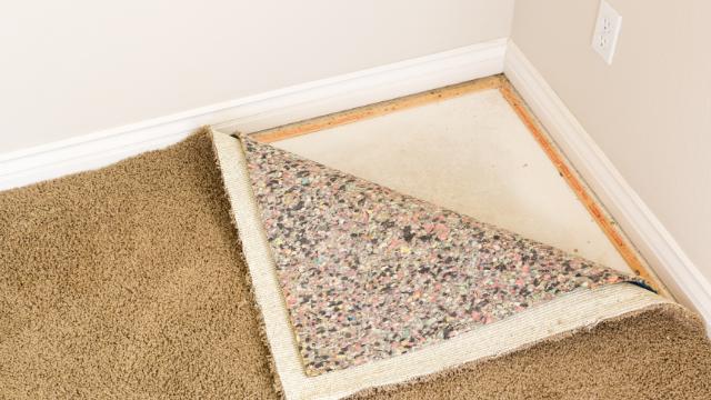 carpet-water-damage